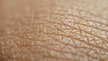 Как выглядит кожа человека под микроскопом?
