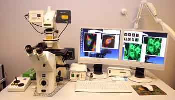 Конфокальный микроскоп. Принцип работы и метод исследования.