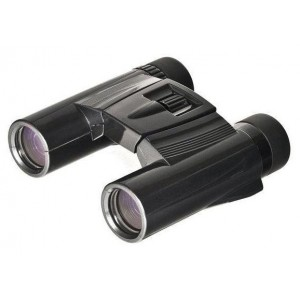 Бинокль Kenko Ultra View 10х25 DH, черный